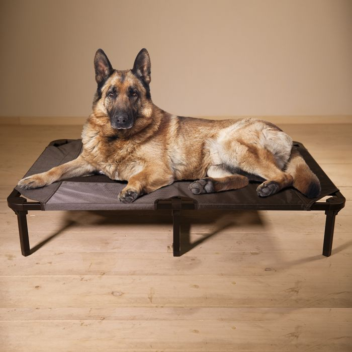 Lucky Dog® Elevated Pet Bed