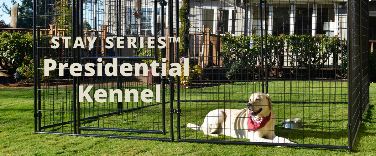 Lucky Dog STAY Series Presidential Kennel